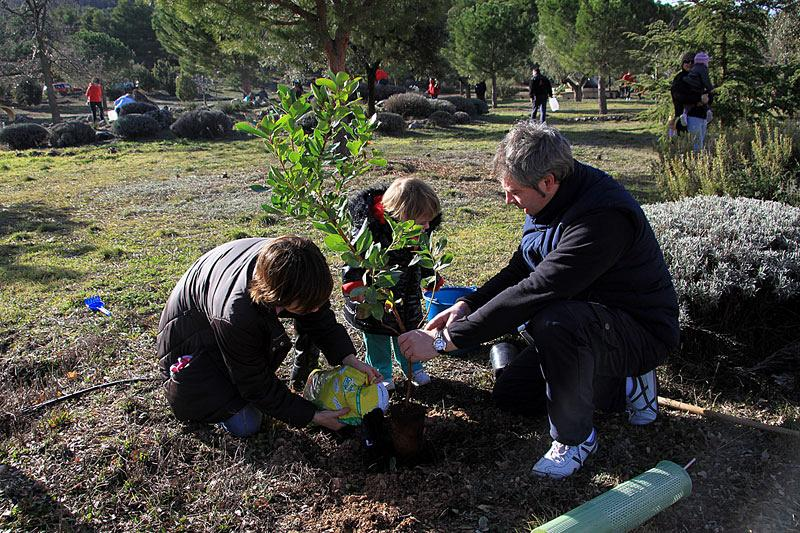 Actiu planting day, a sustainable initiative  6